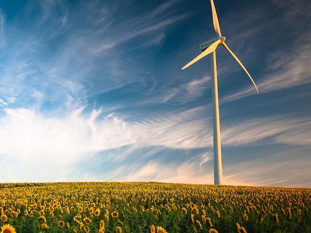 Windturbine in field